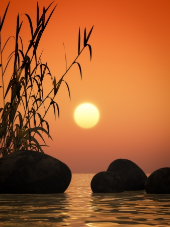 shore line: nice ocean sunset image with bamboo and stones Stock Photo