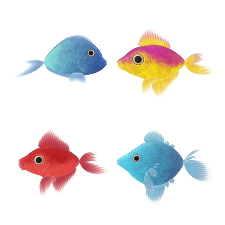 An image of four nice fish illustrations Stock Illustration - 13636411