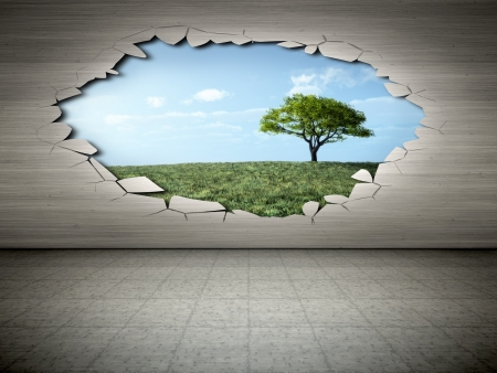 An image of a wall with a hole view to a tree photo