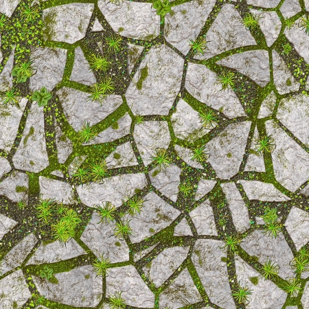 road surface: An image of a stone background with plants Stock Photo