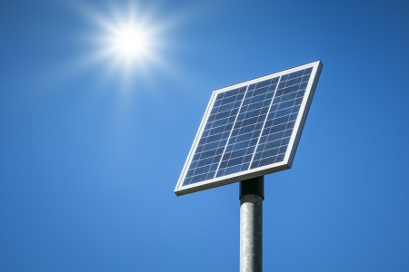 An image of a small solar plant photo