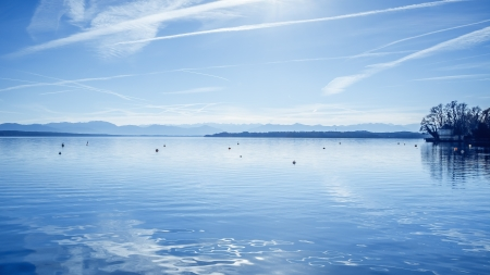 birds lake: An image of the Starnberg Lake in Bavaria Germany