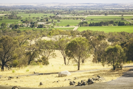 An image of the Barossa Valley landscape in Australia photo