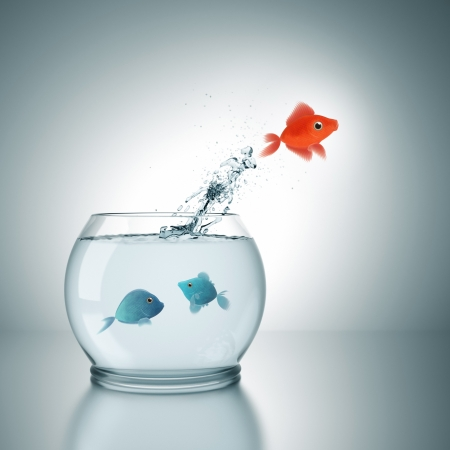 A fishbowl with a red fish jumping out of the water photo