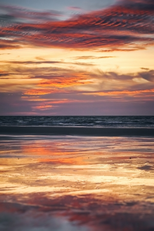 horizon reflection: An image of the nice sunset background