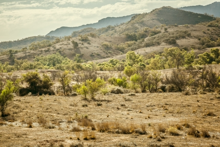 ranges: An image of the great Flinders Ranges in south Australia