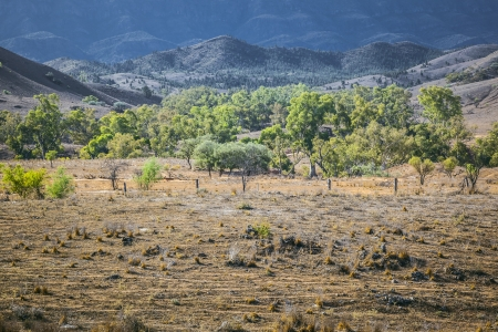flinders: An image of the great Flinders Ranges in south Australia