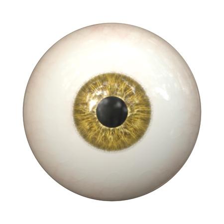 globo ocular: Una imagen de una textura marrón del ojo Foto de archivo