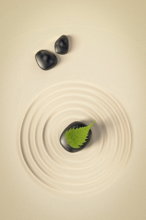 An image of a nice zen background with black stones and a leaf Stock Photo