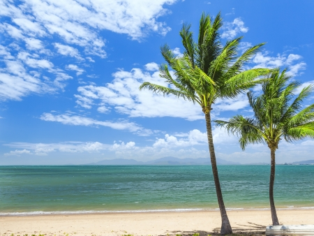An image of the Magnetic Island Australia Stock Photo