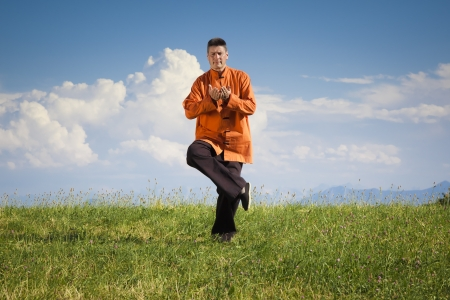 qi: A man doing Qi-Gong in the green nature Stock Photo