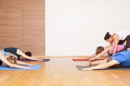 health clubs: An image of some people doing yoga exercises