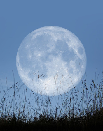 An image of a mystical and beautiful full moon in the sky photo
