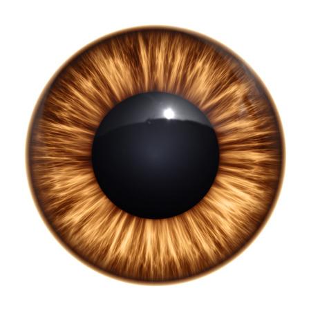 L'immagine di un bel marrone texture occhio Archivio Fotografico - 27262575