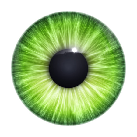 An image of a nice green eye texture photo