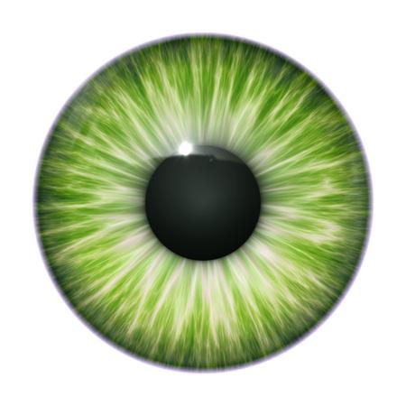 eye green: Una imagen de una textura agradable ojo verde Foto de archivo