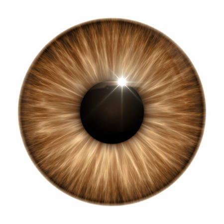 An image of a nice brown eye texture Stok Fotoğraf - 29988126