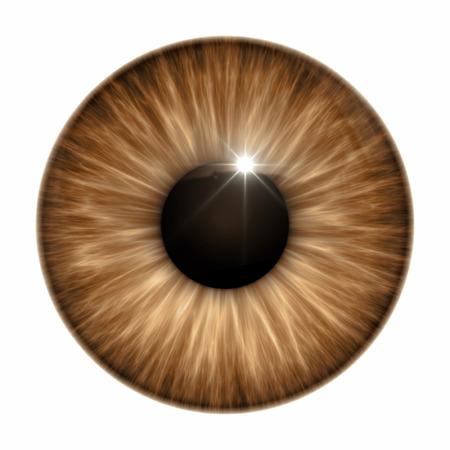 ojos marrones: Una imagen de una textura marrón del ojo Foto de archivo