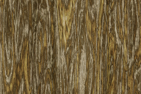 wood structure: An image of a beautiful wooden background