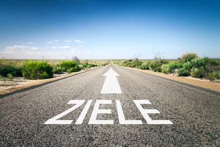 An image of a road to the horizon with text goals in german language photo