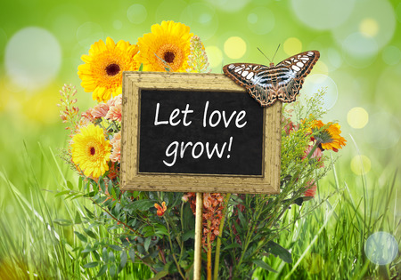 let on: An image of a little chalkboard in the garden with the message Let love grow