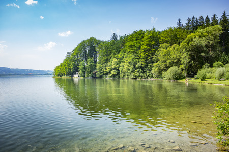 ocean plants: An image of the Kochelsee in Bavaria Germany Stock Photo