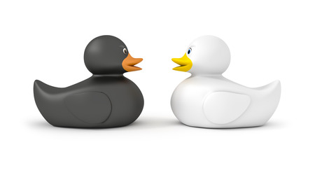 squeak: An image of a black and a white duck