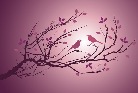 love image: An image of two bird in love on a branch Stock Photo
