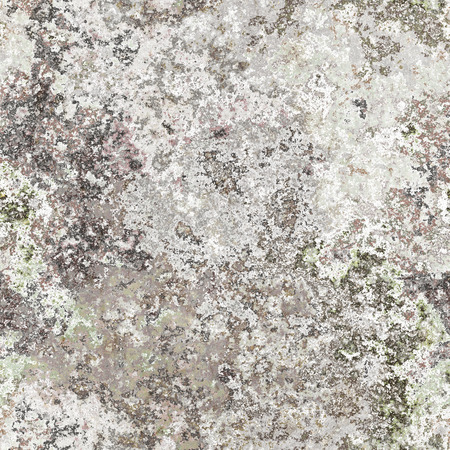 weathered wood: 2d illustration of a seamless lichen background
