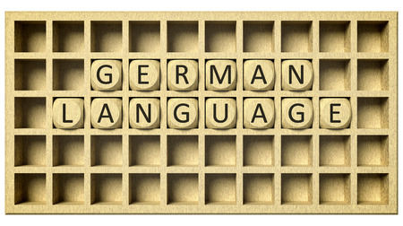 text field: 3d rendering of a wooden grid with cubes and the message german language