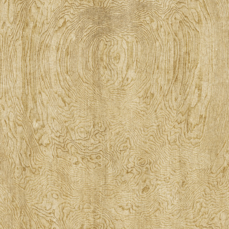 Illustration of a nice gnarled wooden background texture