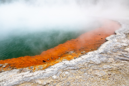 An image of the hot sparkling lake in New Zealand
