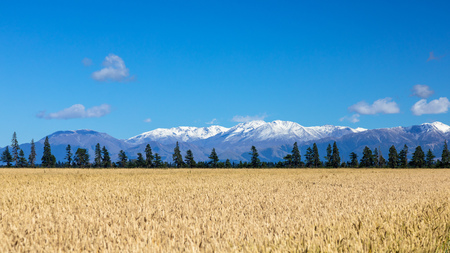 An image of Mount Taylor and Mount Hutt scenery in south New Zealand scenery in south New Zealand