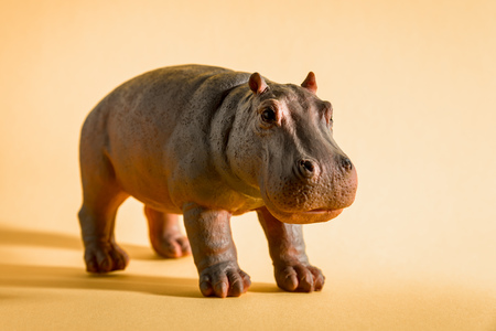 An image of a hippopotamus figure isolated on red 스톡 콘텐츠