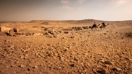 An image of a camel ride in the desert Cairo Egypt Banco de Imagens