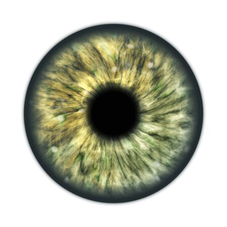 An illustration of a dark green brown human iris Banco de Imagens