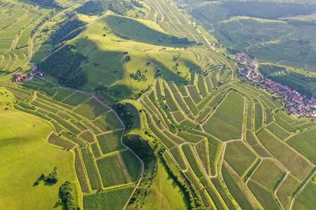 An image of an aerial view vineyard scenery at Kaiserstuhl Germany