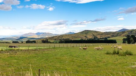 An image of a landscape scenery in south New Zealand