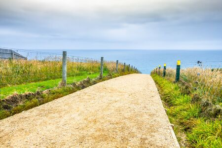 An image of the path to Tunnel Beach in New Zealand