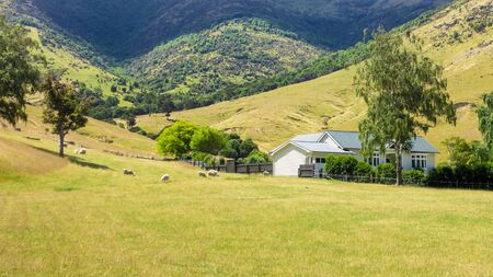An image of a house with sheep in New Zealand