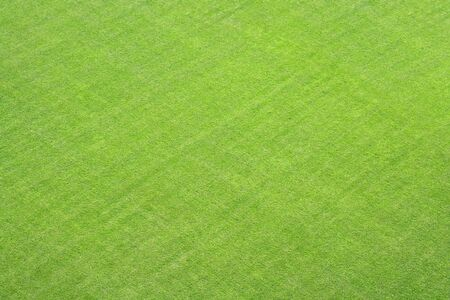 A photography of a green grass lawn texture background