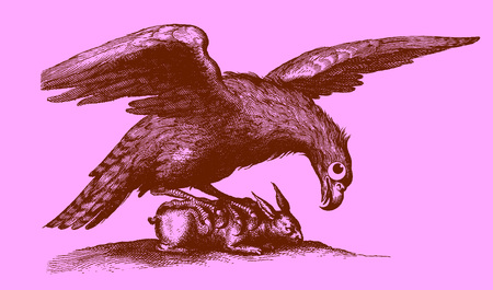 Cute predator: eagle with outstretched wings sitting on a captured rabbit. Illustration after a historic woodcut engraving from the 17th century. Easy editable in layers