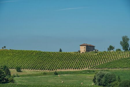 View over the hills and vineyards in the piedmont with a house on the hill