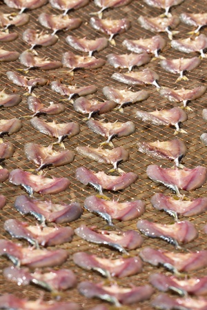 desiccation: Drying fish