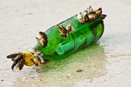 Message in the bottle on the beach photo
