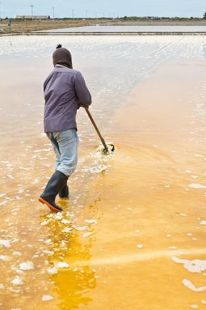 evaporating: Salt harvesting
