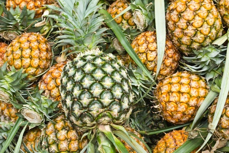 Group of pineapple Stock Photo