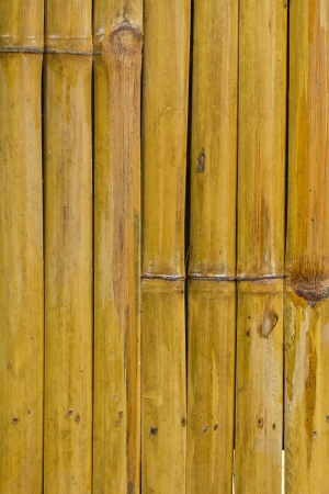 Bamboo wall background photo