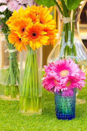 Colorful flower in vase   Stock Photo