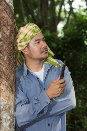 Asian farmer in Para rubber garden